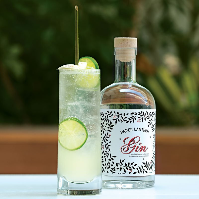 PL-bottle-with-gin-tonic