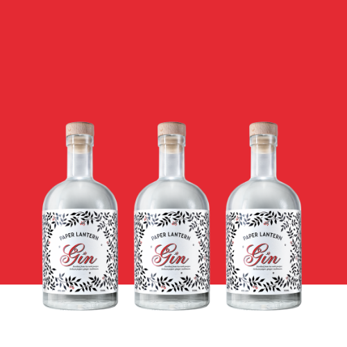 DPL party pack asian gin (1)