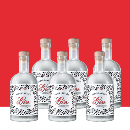 DPL party pack asian gin (2)