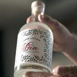 Paper Lantern Asian Gin